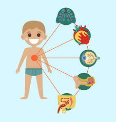 Kid health poster with human body anatomy vector