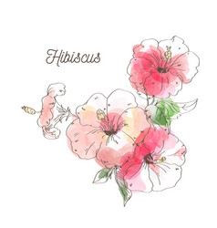 luxury hibiscus flower on white background vector image