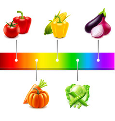 vegetables around rainbow strip isolated vector image