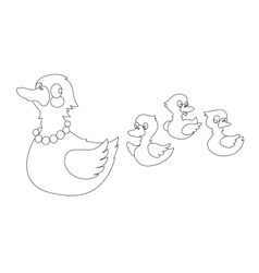 Mother duck with three baby ducks vector image