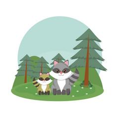 raccoons family cute animals cartoons vector image
