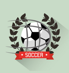 soccer ball competition award wreath sport vector image