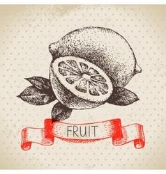 Hand drawn sketch fruit lemon Eco food background vector image