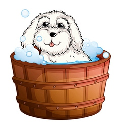 A puppy taking bath vector