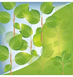 Abstract eco background with plant vector image