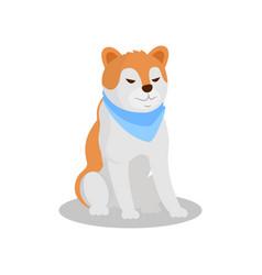 Akita inu pedigree dog cute puppy pet character vector