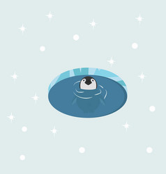 baby penguin in water vector image