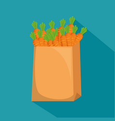 carrots in shopping bag vector image