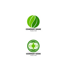 set of green leaf nature circle logo template vector image