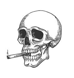 skull smoking cigarette engraving vector image
