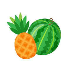 watermelon and pineapple exotic fruit berry melon vector image