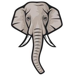 indian elephant head vector image