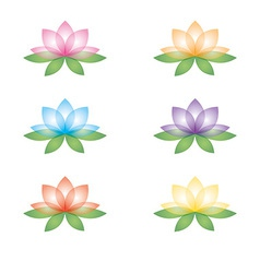 Set of lotus flowers on a white background vector image vector image