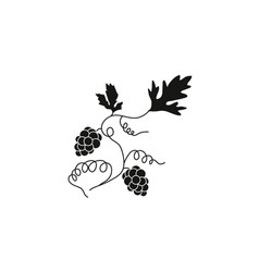 black silhouette of grapes vector image