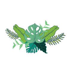 Hand drawn tropical foliage composite design vector