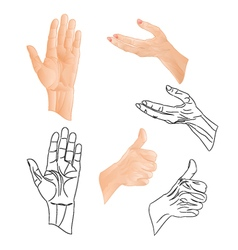 Human hands drawing and outline set two vector