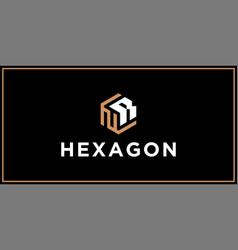 Nr hexagon logo design inspiration vector