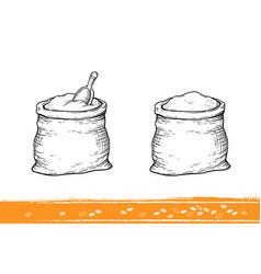 Sacks with flour and wheat vector