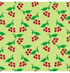 Seamless pattern with ripe berries vector image