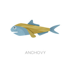 small anchovy sea fish marine vector image