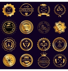 Collection of vintage round golden badges vector image