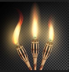 burning beach bamboo torch burning in the dark vector image vector image