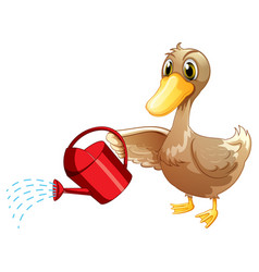 Brown duck and watering can on white background vector
