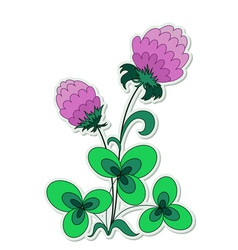 Clover flower vector