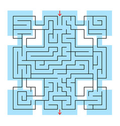 colorful square fantastic labyrinth with an input vector image