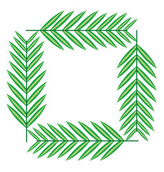 exotic and tropical leafs plants square frame vector image