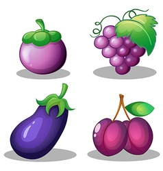 Fruits and vegetable in purple vector image
