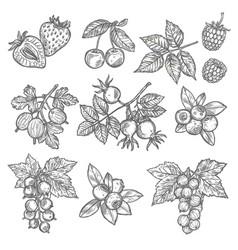 landscape design and gardening service banner vector image