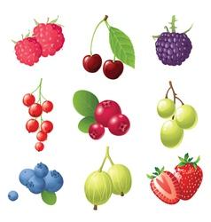 9 sweet berries icons set vector image