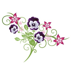 Pansy summer vector image