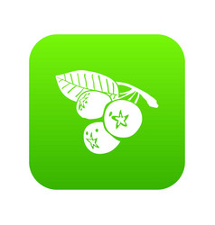 blueberry icon green vector image