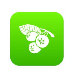 Blueberry icon green vector