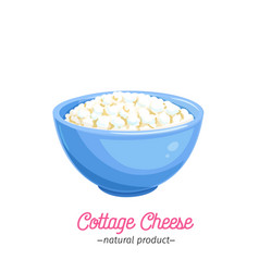 Cottage cheese icon vector