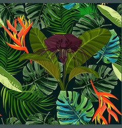Dark purple tacca flower and heliconia background vector