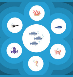 Flat icon marine set of cachalot fish algae and vector