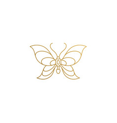 linear icon flying butterfly hand drawn with vector image