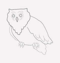 Owl icon line element of owl vector
