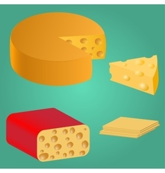 Set Pieces of cheese vector