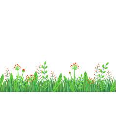 spring grass seamless border floral vector image