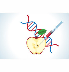 Syringe with apple and dna molecule vector