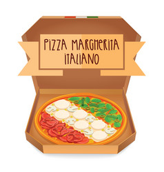 the real pizza margherita italiano italian pizza vector image