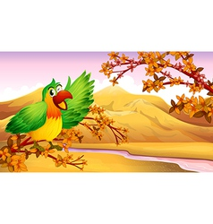 A green parrot in an autumn scenery vector image vector image