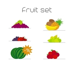 Foods market fruits flat icons set vector image vector image