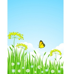 summer meadow with flowers and vector image vector image