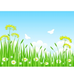 green meadow with flowers and vector image vector image