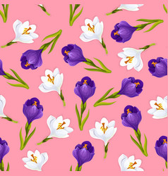 crocus flowers seamless pattern vector image